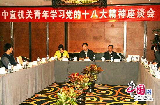 11月23日,中直机关青年学习宣传贯彻党的十八大精神座谈会召开。图为座谈会现场。中国网 傅阳 摄